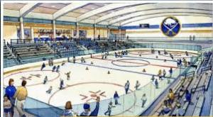 Draw up of what the rinks could look like. - Photo via twointhebox.com